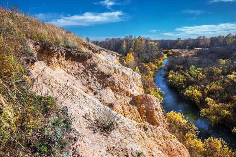 Ландшафт осени Область Новосибирска, западный Сибирь, Россия стоковые фото