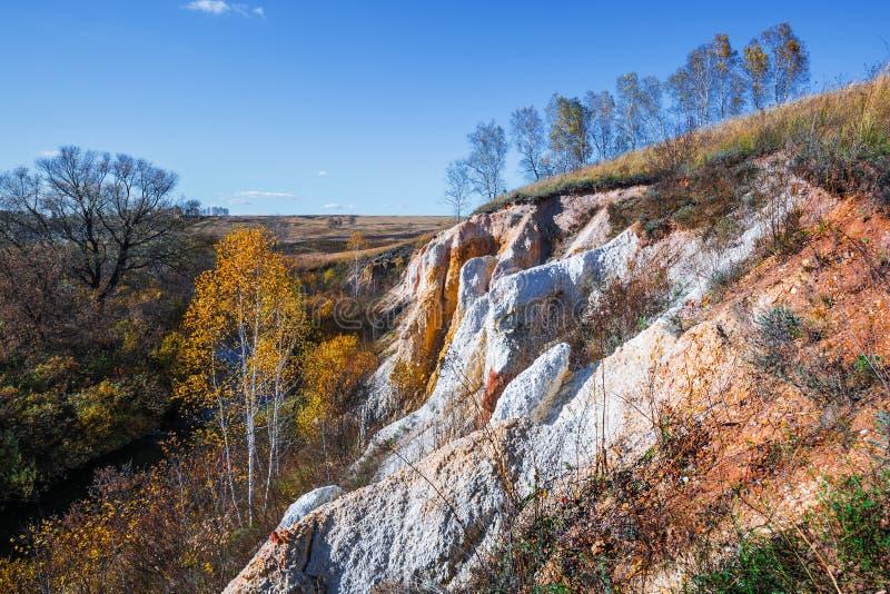 Ландшафт осени Область Новосибирска, западный Сибирь, Россия стоковое изображение rf