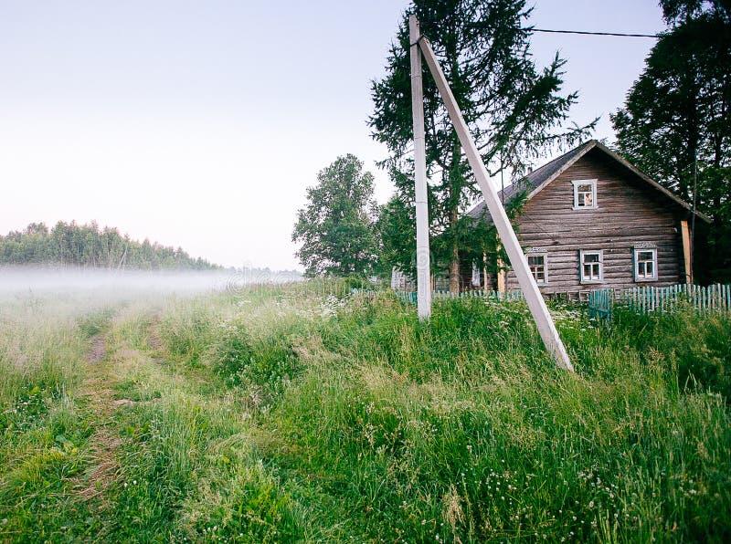 Ландшафт падения осени над полями с туманом treetops видимым сквозным стоковые изображения
