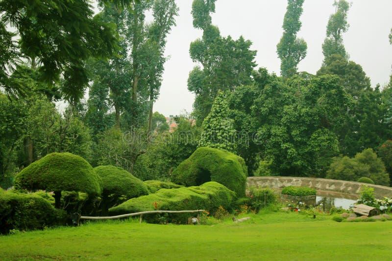 Ландшафт парка холма kodaikanal chettiar стоковая фотография