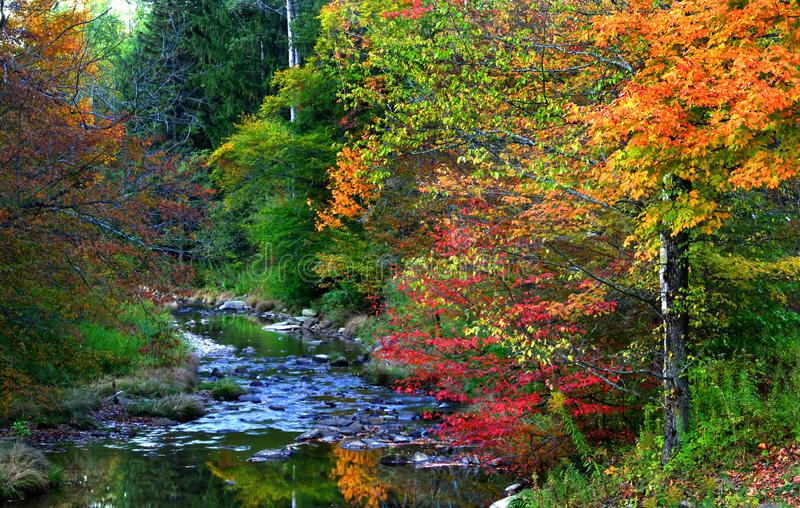 ландшафт Пенсильвания осени сценарная стоковая фотография rf