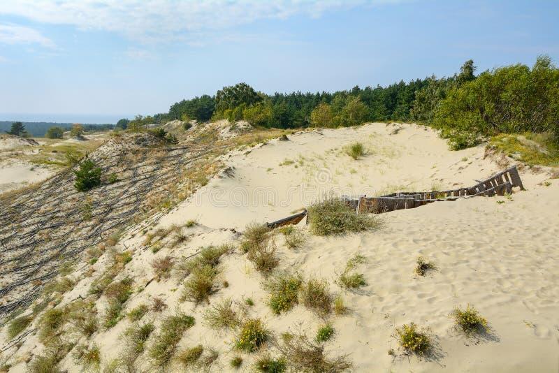 Ландшафт песчанных дюн стоковые фотографии rf