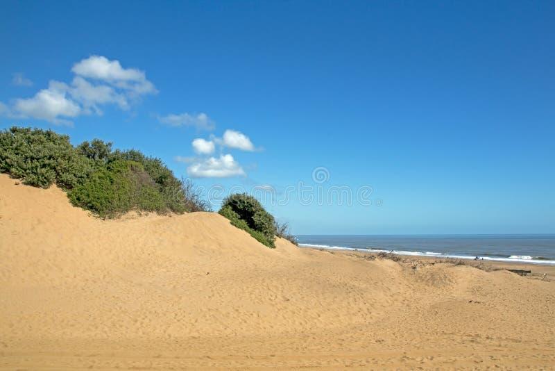 Ландшафт пляжа Mtunzini прибрежный в Южной Африке стоковые фото