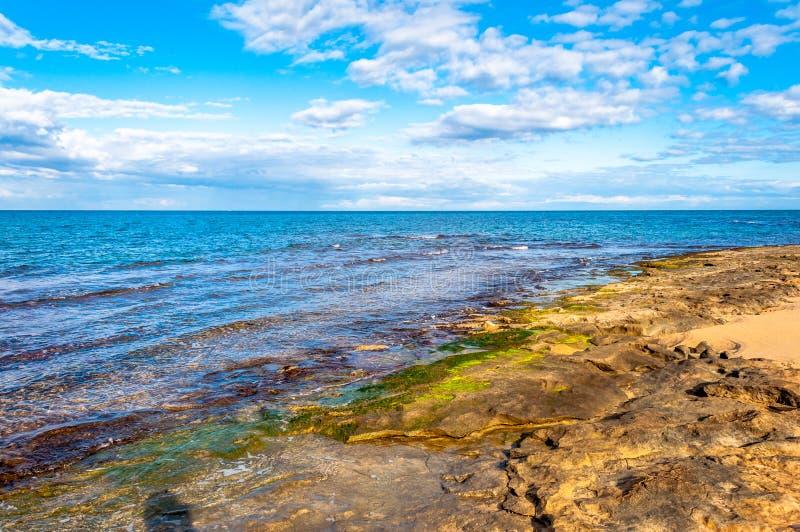 Ландшафт побережья в зиме стоковые изображения rf