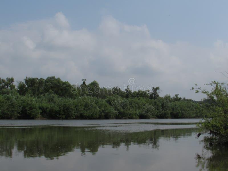 Ландшафт поверхности зеркала ровной спокойного реки с банками, перерастанными кустами и деревьями стоковые фото