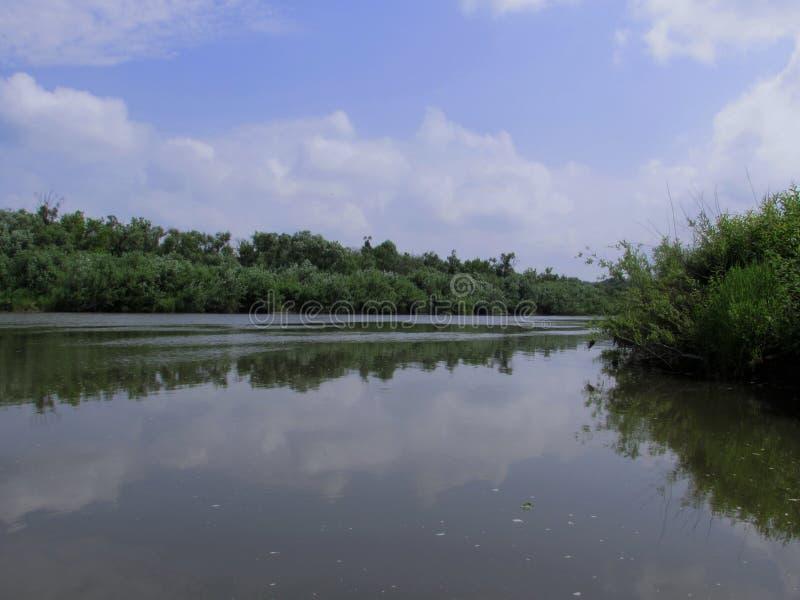 Ландшафт поверхности зеркала ровной спокойного реки с банками, перерастанными кустами и деревьями стоковые изображения rf