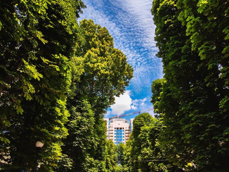 Ландшафт под домом мульти-этажа конструкции против неба стоковая фотография rf