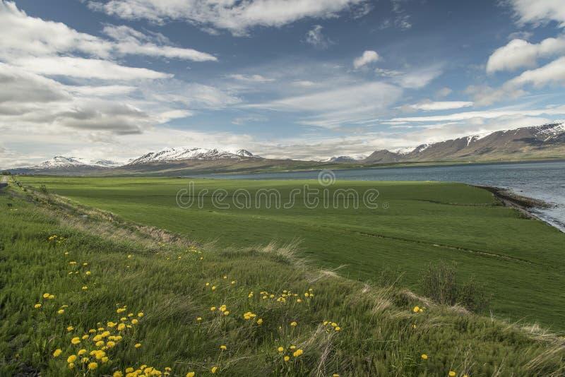 Ландшафт полуострова Trollaskagi стоковая фотография rf