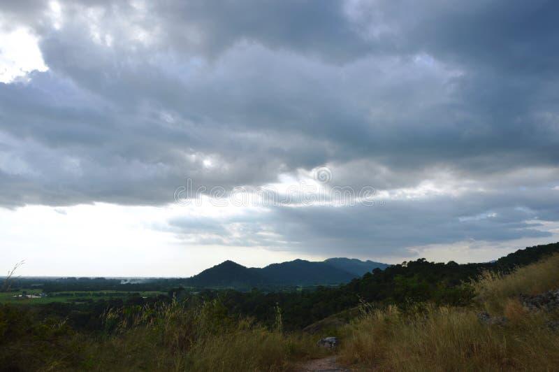 Ландшафт поля цветка травы дуя от ветра на горе Khao Lon в Таиланде стоковое изображение rf