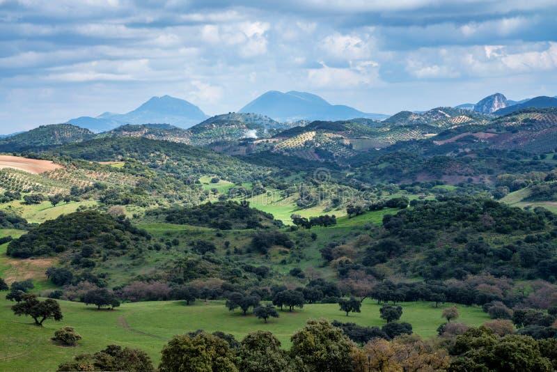 Ландшафт природного парка Сьерра de Grazalema, провинции Кадис, Андалусии, Испании стоковое фото rf