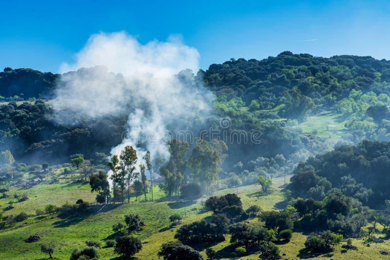 Ландшафт природного парка Сьерра de Grazalema, провинции Кадис, Андалусии, Испании стоковое изображение rf