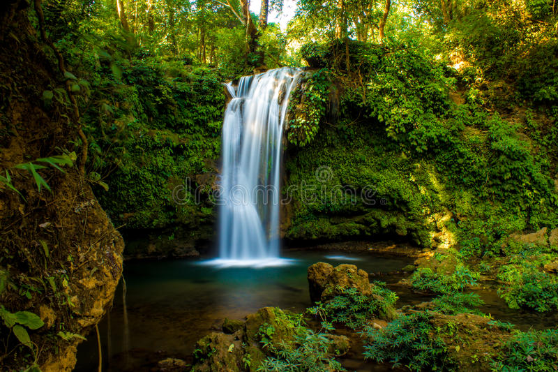 Ландшафт природы водопада стоковое фото rf