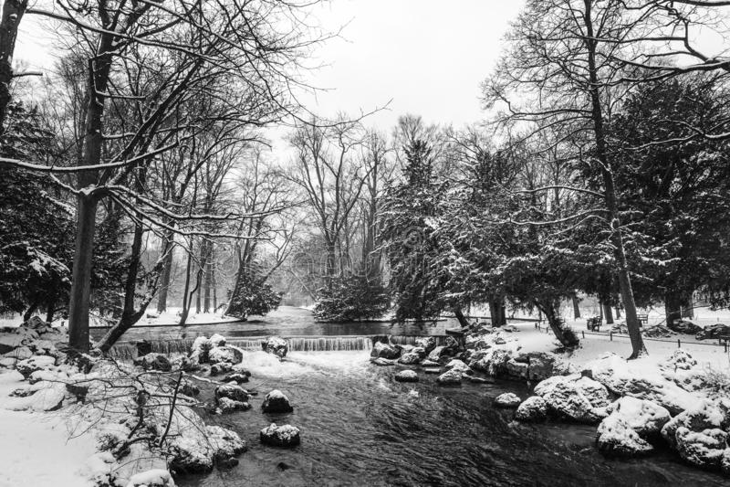 Ландшафт природы зимы в снеге, с деревьями и рекой, в черно-белом стоковая фотография rf