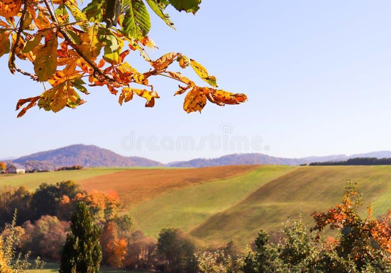 Ландшафт природы осени в Германии стоковая фотография rf