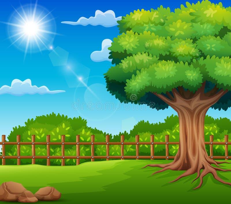 Ландшафт природы с зеленым лугом и солнечным светом иллюстрация штока