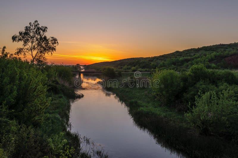 Ландшафт реки с деревом стоковое фото