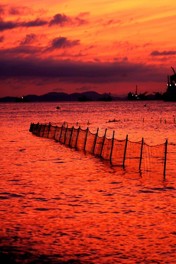 Ландшафт рыбного порта Shenjiamen стоковые фотографии rf