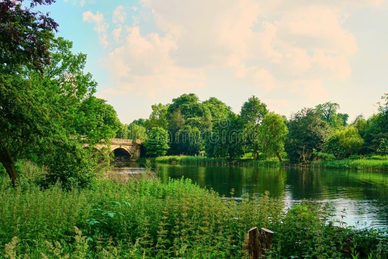 Ландшафт сада озера мост стоковые фотографии rf