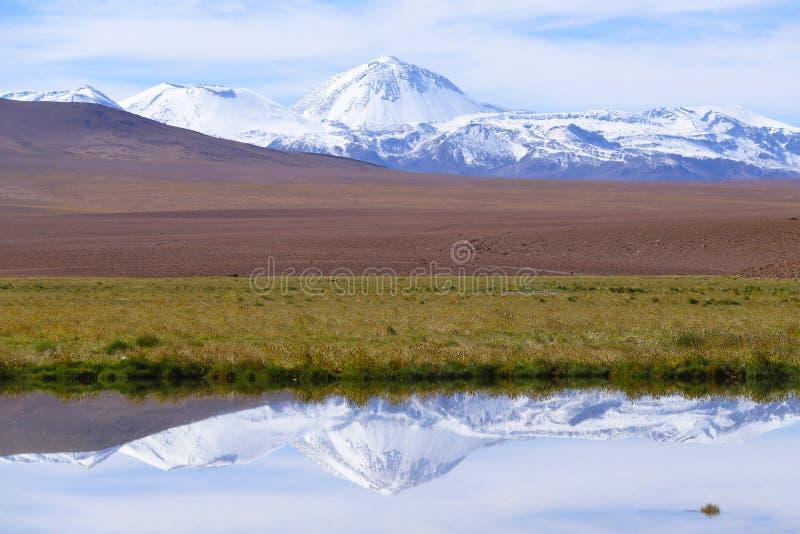 Ландшафт северной Чили с горами Анд и вулканами, пустыней Atacama, Чили стоковое фото