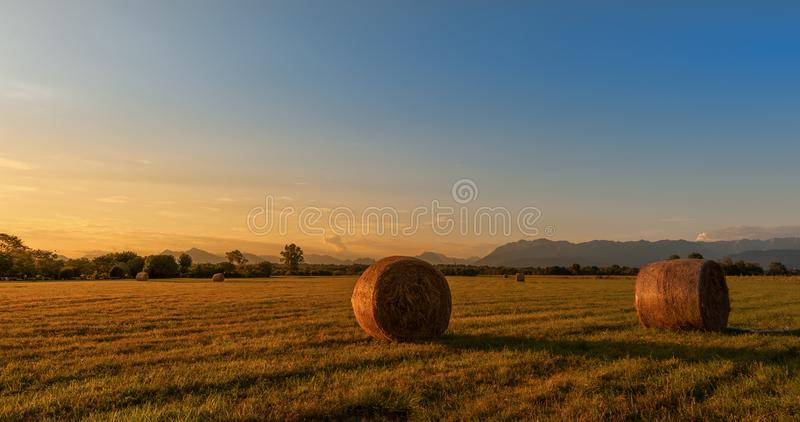 Ландшафт сельской местности Связки сена на поле на золотом заходе солнца стоковое фото rf