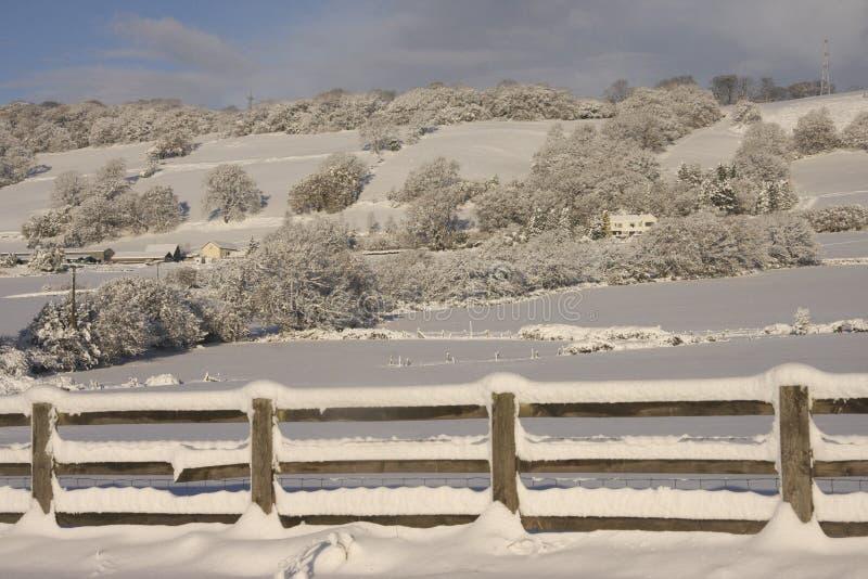Ландшафт снега зимы, Кардифф, Великобритания стоковое фото rf