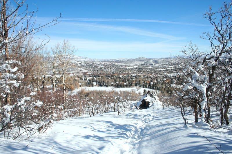 Ландшафт снежка города парка стоковая фотография