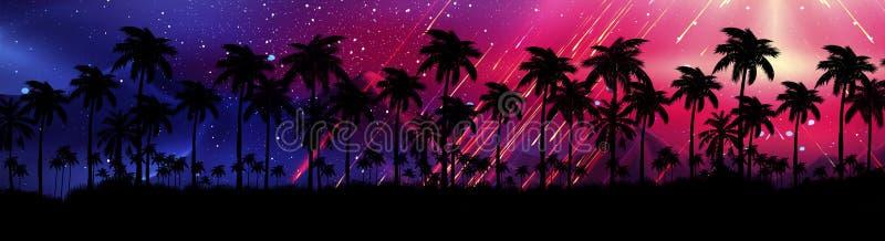 Ландшафт со звездами, заход солнца ночи, звезды Пальмы кокоса силуэта бесплатная иллюстрация
