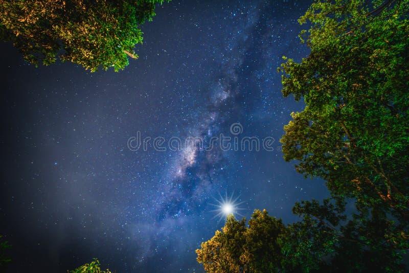Ландшафт с галактикой млечного пути Ночное небо с звездами и silhou стоковое изображение