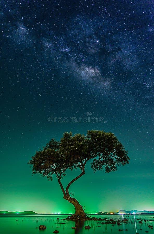 Ландшафт с галактикой млечного пути Ночное небо с звездами и silhou стоковая фотография rf