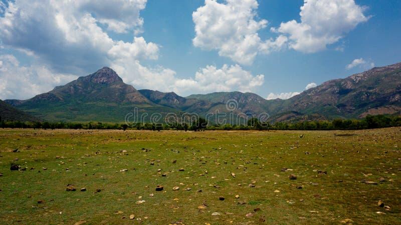 Ландшафт с горным видом стоковое изображение
