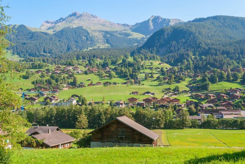 Ландшафт с горным селом в лете, Grindelwald, Швейцарией стоковое фото