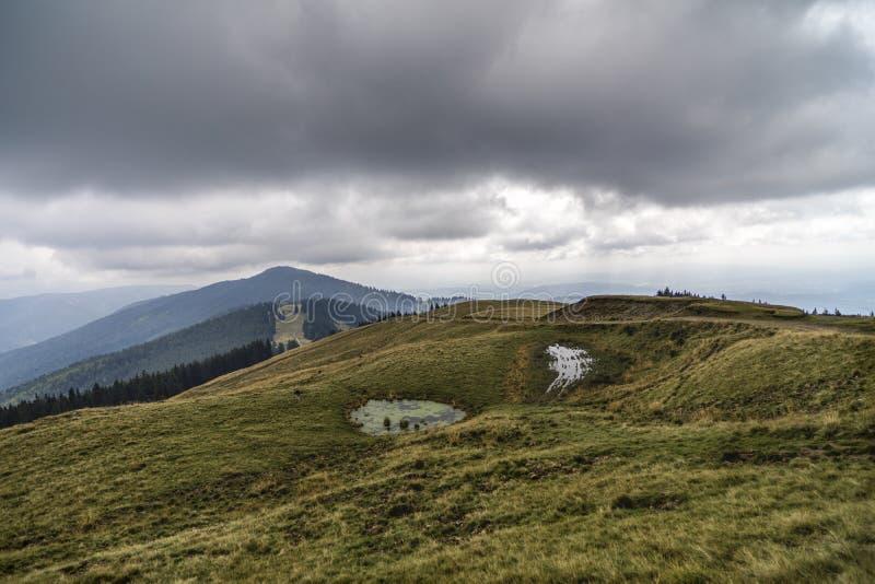 Ландшафт с занавесами ливневого проливного дождя стоковые фото