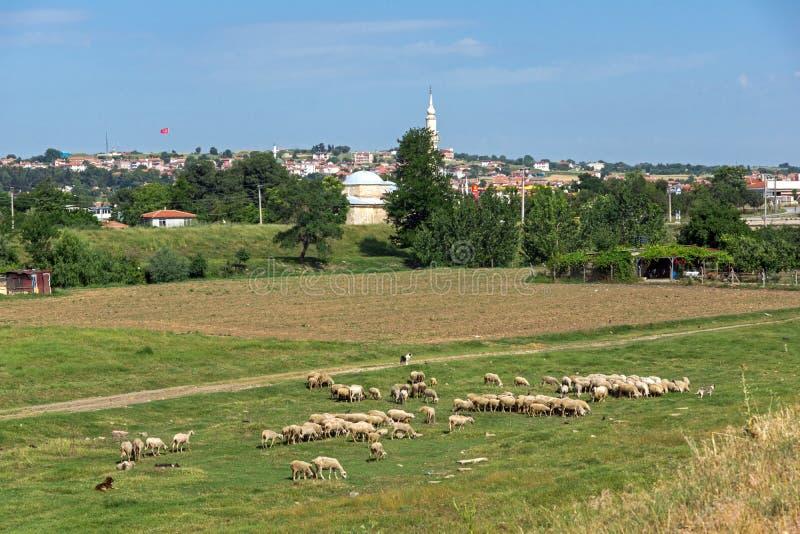Ландшафт с зелеными лугами на окраинах города Эдирне, восточной Фракии, Турции стоковые изображения