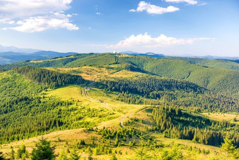 Ландшафт с зелеными солнечными холмами стоковое фото
