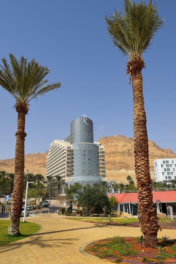 Ландшафт с пальмами на предпосылке роскошной гостиницы в мертвом море, Израиле стоковые изображения