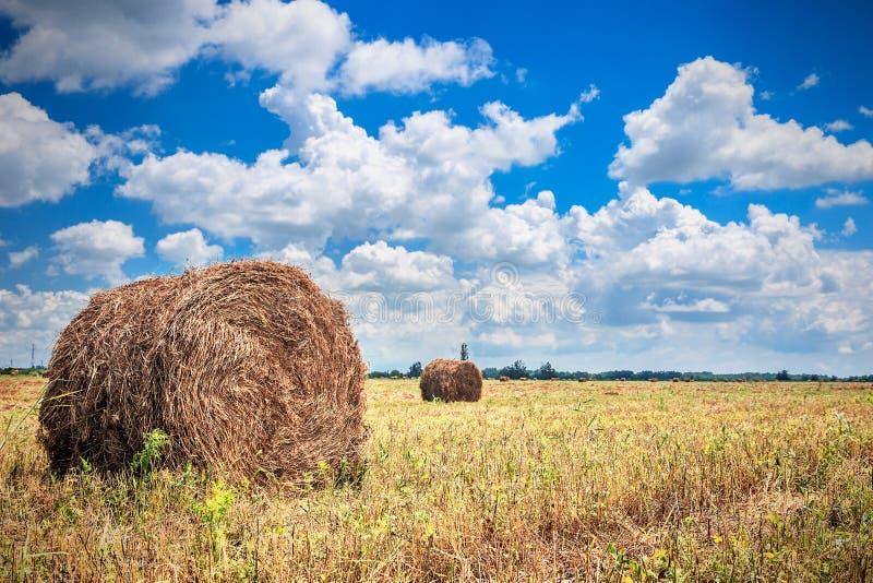 Ландшафт с стогом сена на поле стоковая фотография rf