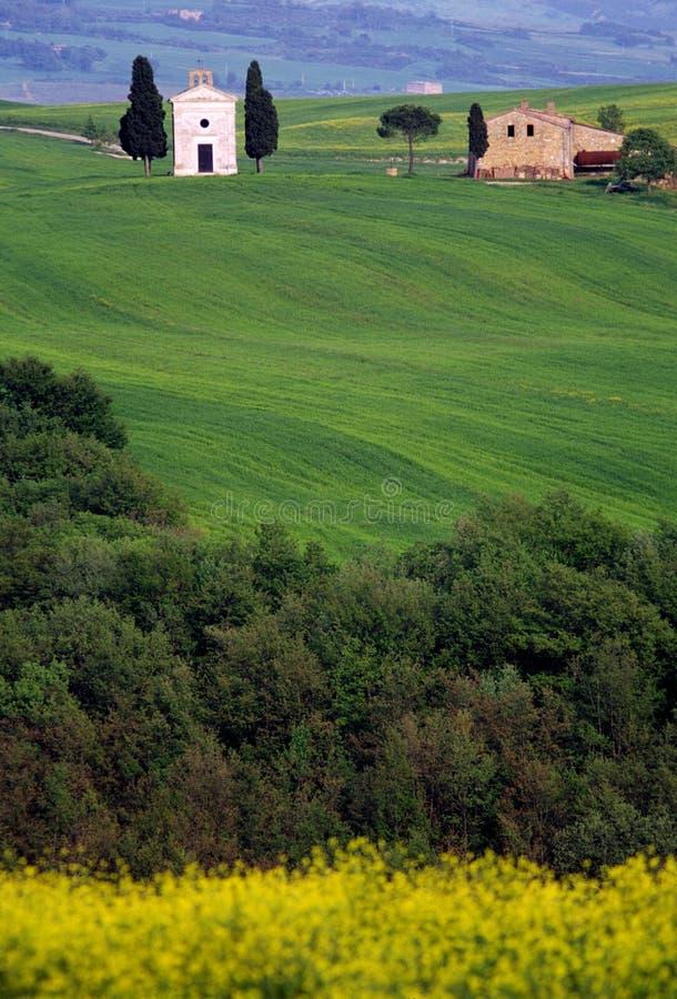 ландшафт Тоскана Италии стоковое изображение rf