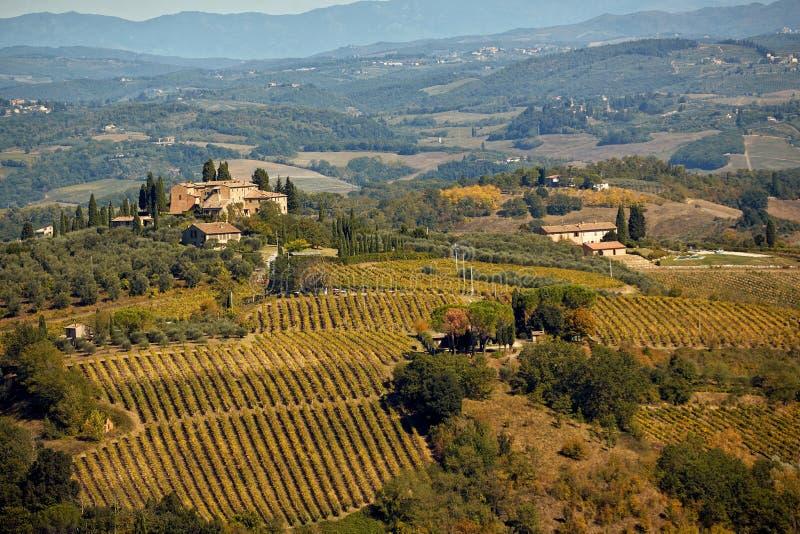 Ландшафт Тосканы с холмом, домом и виноградником стоковые фотографии rf