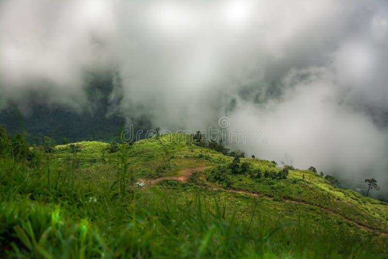 Ландшафт тумана и горы, в Таиланде стоковые фото