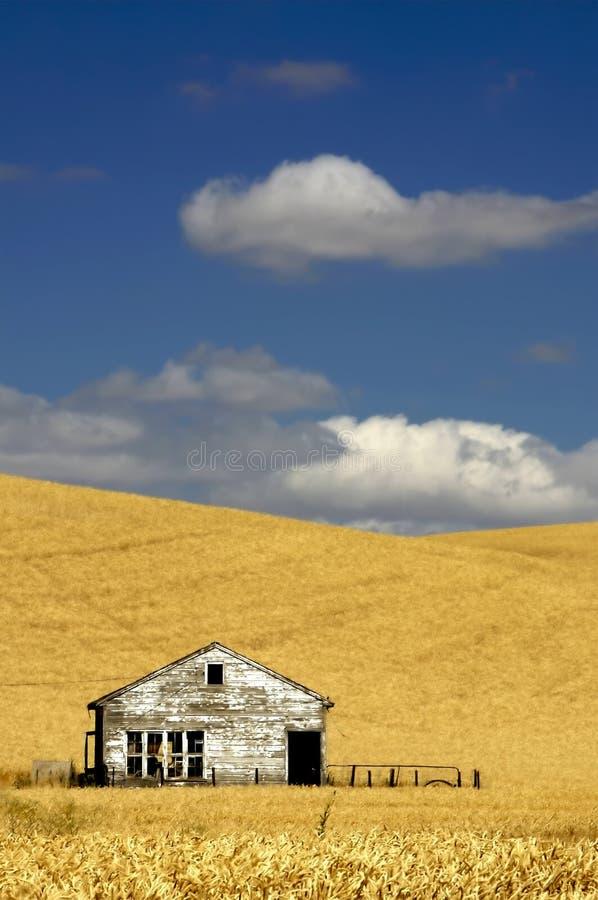 ландшафт фермы старый стоковые фото