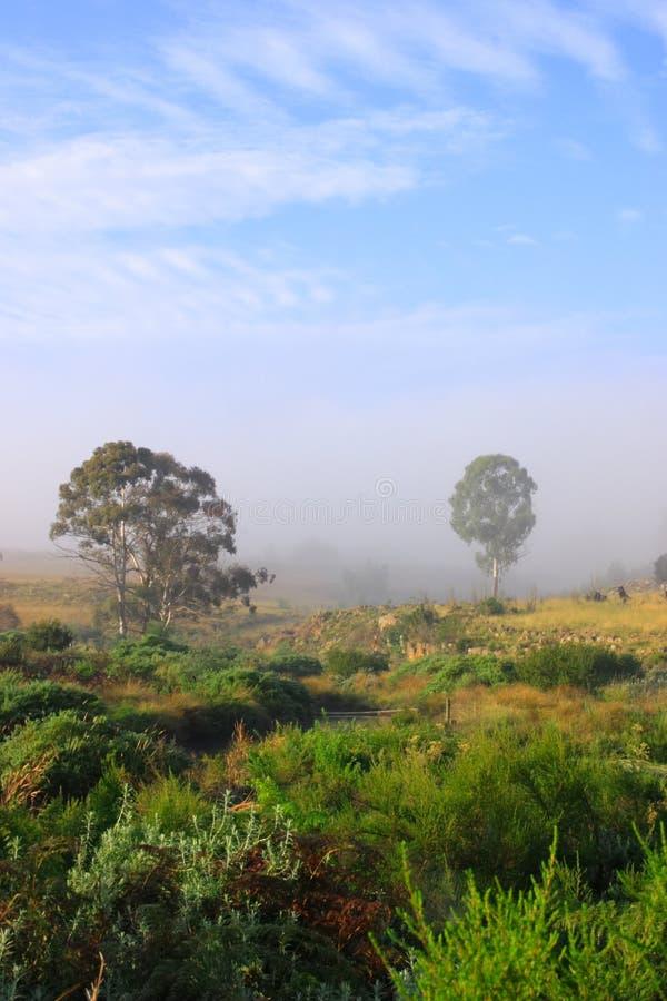 ландшафт фермы стоковые фотографии rf