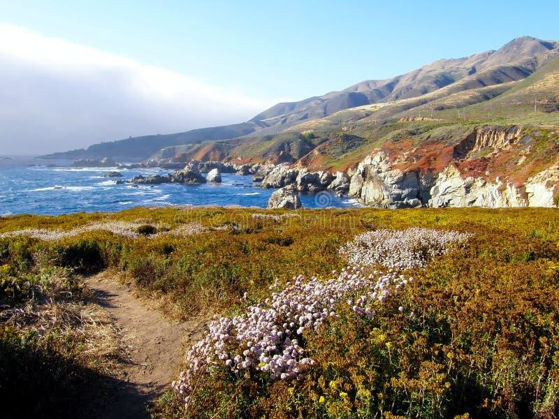 ландшафт california сценарный стоковая фотография rf