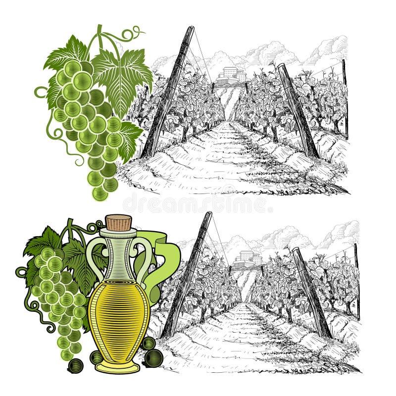 Ландшафт 2 drawned эскизов виноградника со зданием на холме, на horizont с элементами цвета Белые виноградины и острословие виног бесплатная иллюстрация