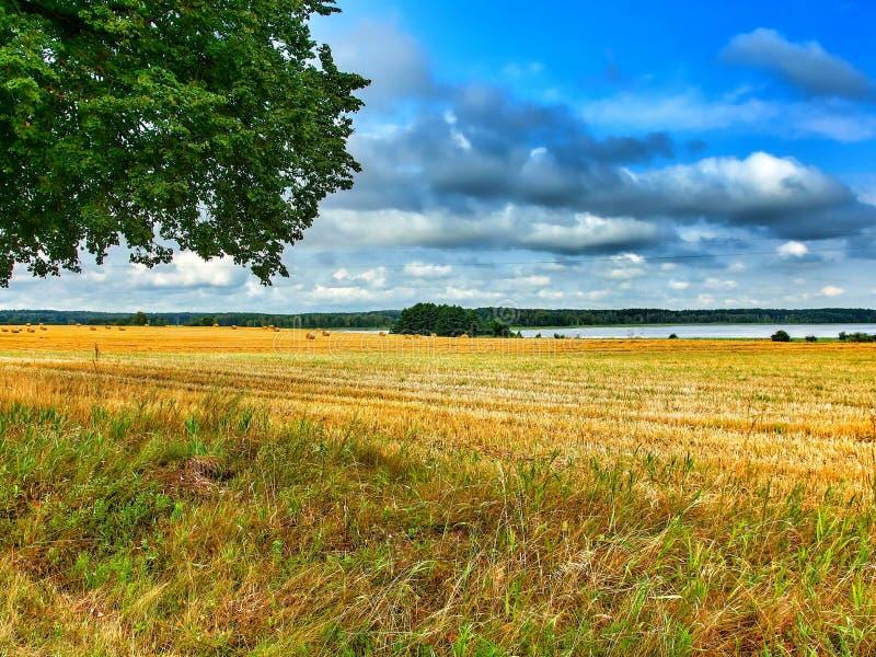 Ландшафт Masuria в Польше Озеро Warnolty стоковые фотографии rf
