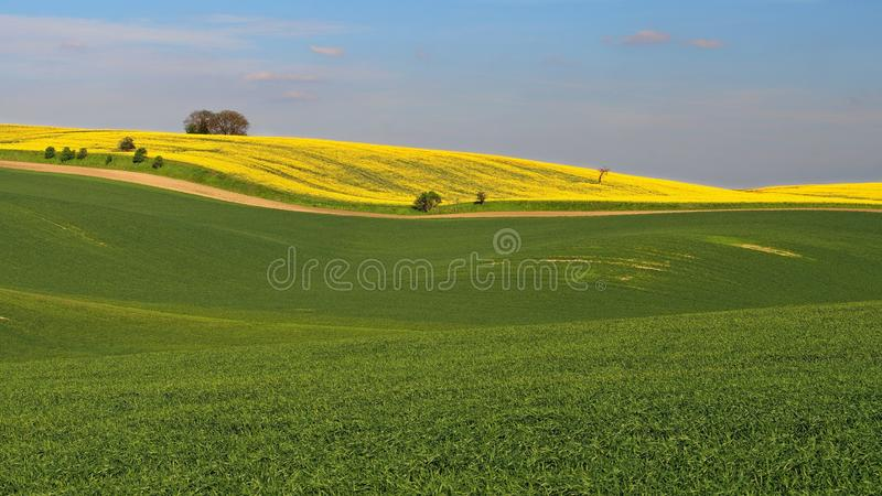 Ландшафт Moravian Тосканы, южной Моравии, чехии стоковое изображение rf