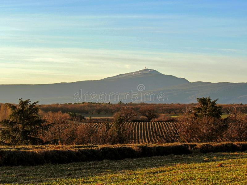 Ландшафт Provancal с полями на заходе солнца в wintertime, Провансалью горы Венту и lavander, южной Францией, Европой стоковая фотография rf