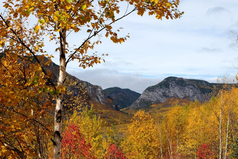Ландшафты падения, Канада стоковое фото rf
