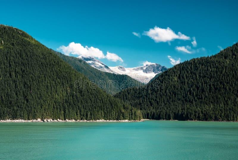 Ландшафт Аляски с зеленым лесом, moutains реки с снегом стоковые изображения rf