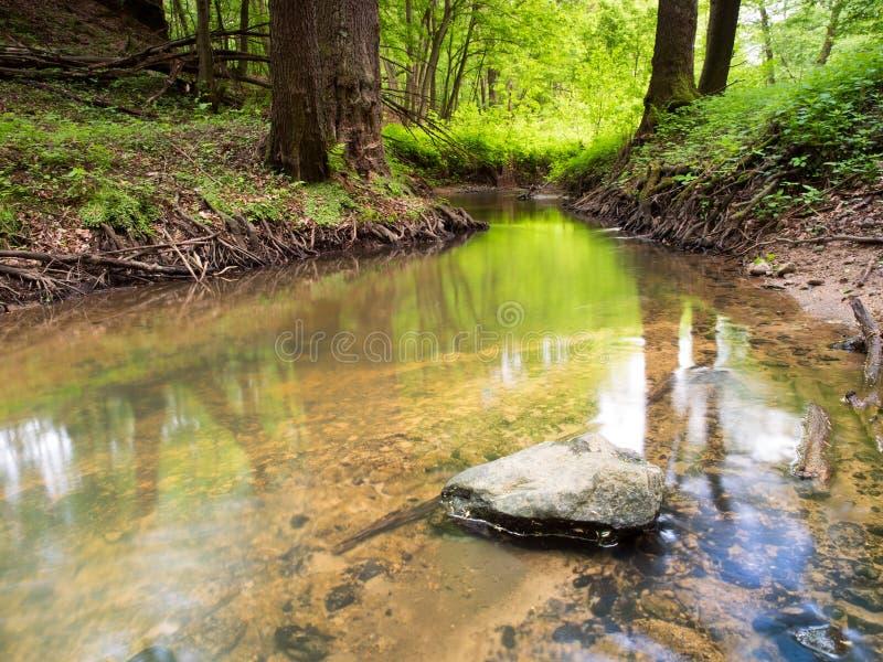 Download Ландшафт валы зеленого цвета травы Стоковое Изображение - изображение насчитывающей польша, погода: 40584059