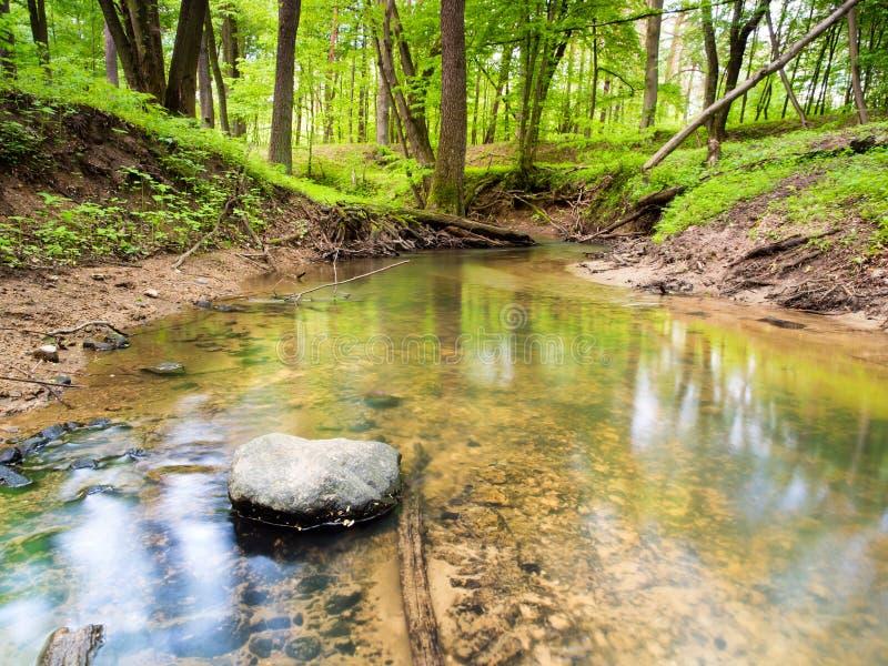 Download Ландшафт валы зеленого цвета травы Стоковое Фото - изображение насчитывающей природа, countryside: 40584080